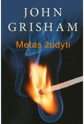 metas-zudyti_1450345371-192018d59ea23bcf06c584b5a24c309d.jpg
